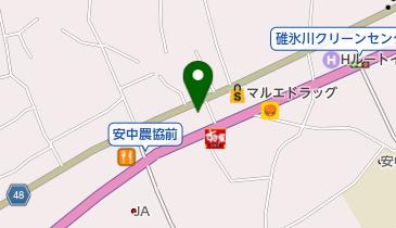 安中SS / 群馬自動車燃料販売(株)の地図画像