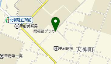 国立病院機構 甲府病院の地図画像