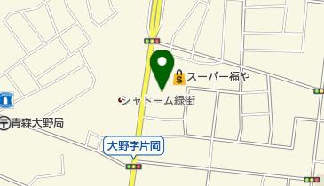 リカープラザ SKAL (スコール) 大野店の地図画像