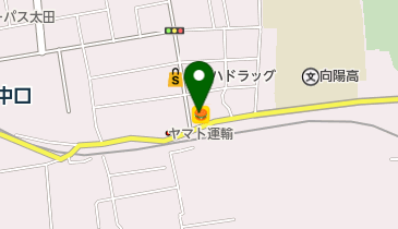 和歌山 ドミノピザ