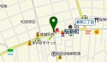 カレーハウスCoCo壱番屋 東急桜新町駅前店の地図画像